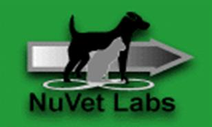 Ellendale Labradors - Breeders of Silver, Charcoal, & Silver